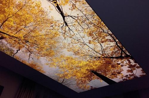 Плёночные натяжные потолки бесшовные