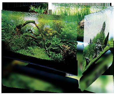 аквариум декорация