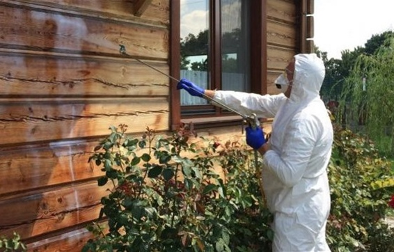 Захист дерев'яного будинку